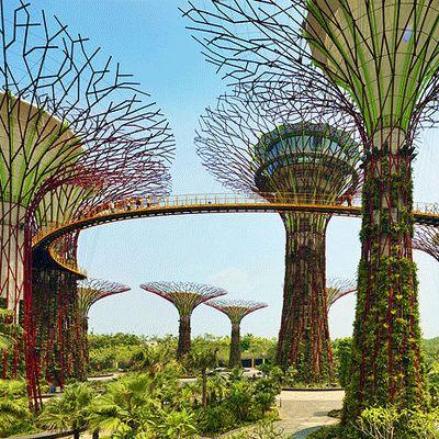 Best Tourist Spot In Singapore  http://www.visiit.com/