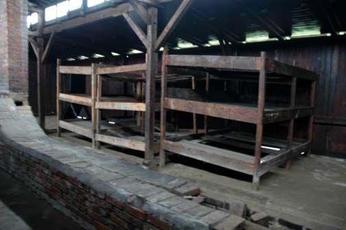 Photo of bunk beds in barracks at Auschwitz-Birkenau