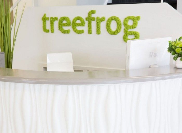 Treefrogs New Newmarket Offices