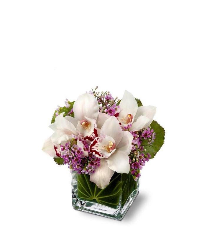 Teleflora's Lovely Orchids | Floral Arrangements | Flowers ...