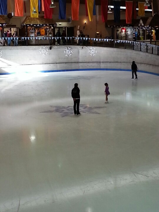 Learn to ice skate at Ober Gatlinburg.  Spent a lot of wonderful vacation days here while growing up and with my own kids. Now I love living here. Mary T.