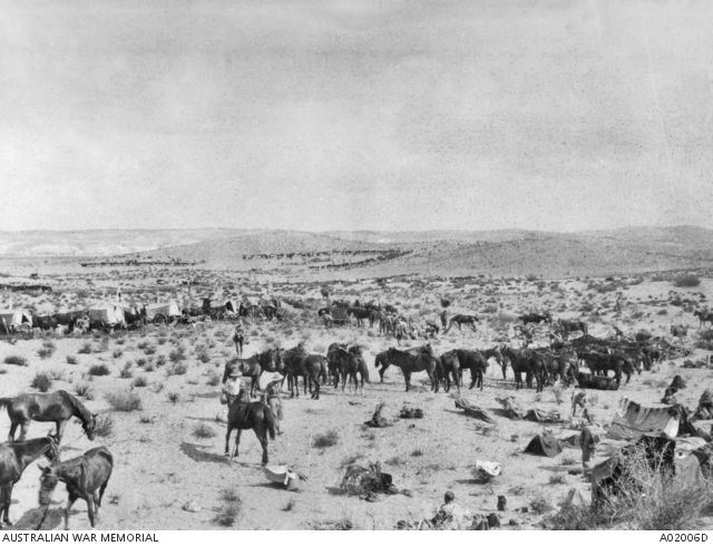 The 1st Australian Light Horse Brigade bivouaced prior to the capture of Beersheba.  Horses and wagons are in the foreground and in the distance horse lines can be seen.  This is the fourth image in a five part panorama. See A02006P for the combined image. Ottoman Empire, Palestine, Asluj, 30 Nov 1917