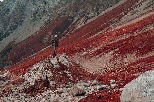 Strange & Poetic Series of a Lonely Astronaut – Fubiz Media