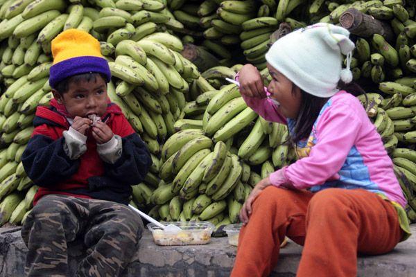 bolivia-apuesta-alimentos_172848