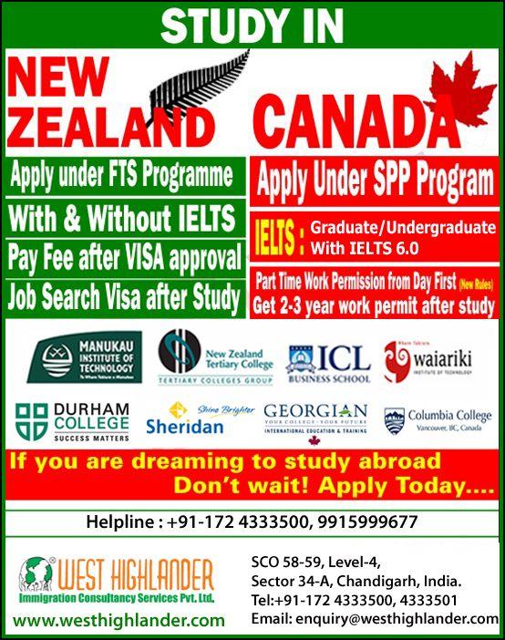 Caspi study new zealand