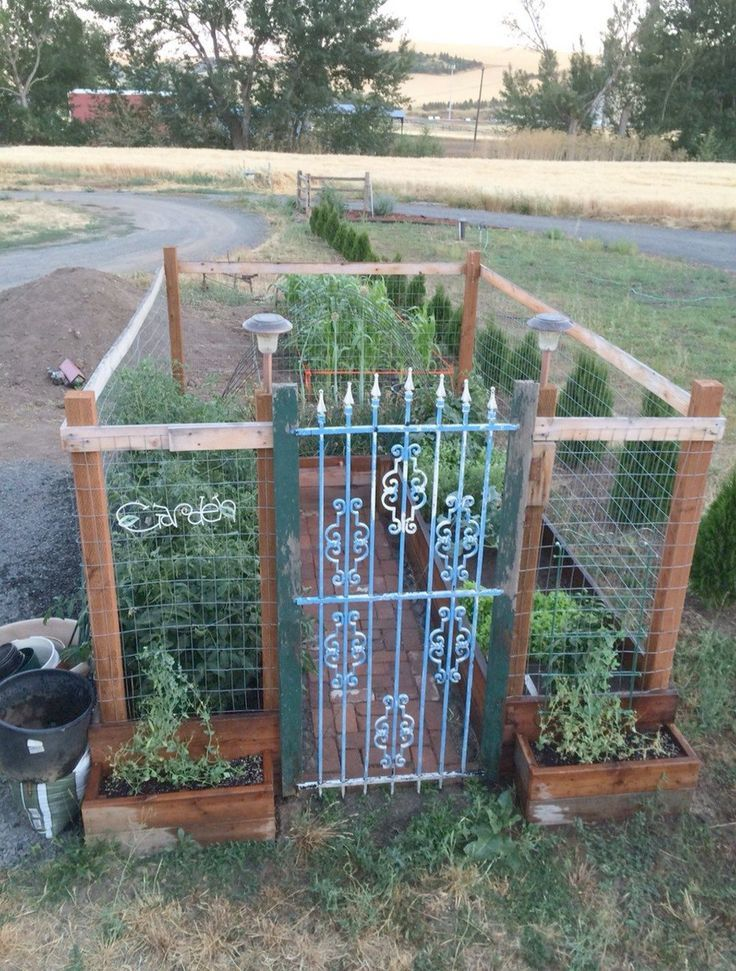 Raised Garden Bed Corners Menards Around Lowes Raised Garden Bed On Legs What Ou With Images Diy Raised Garden Raised Garden Raised Garden Beds Diy