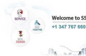 The inexpensiveness and the easy accessibility to the services is what sets them apart and makes them more demanding than any other web design service.