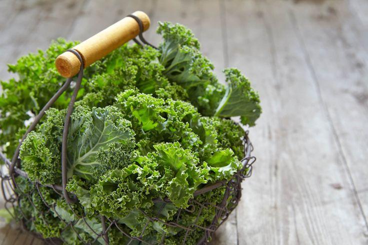 Por qué debes incluir el kale en tu dieta ¡ya! – Well Fit Living