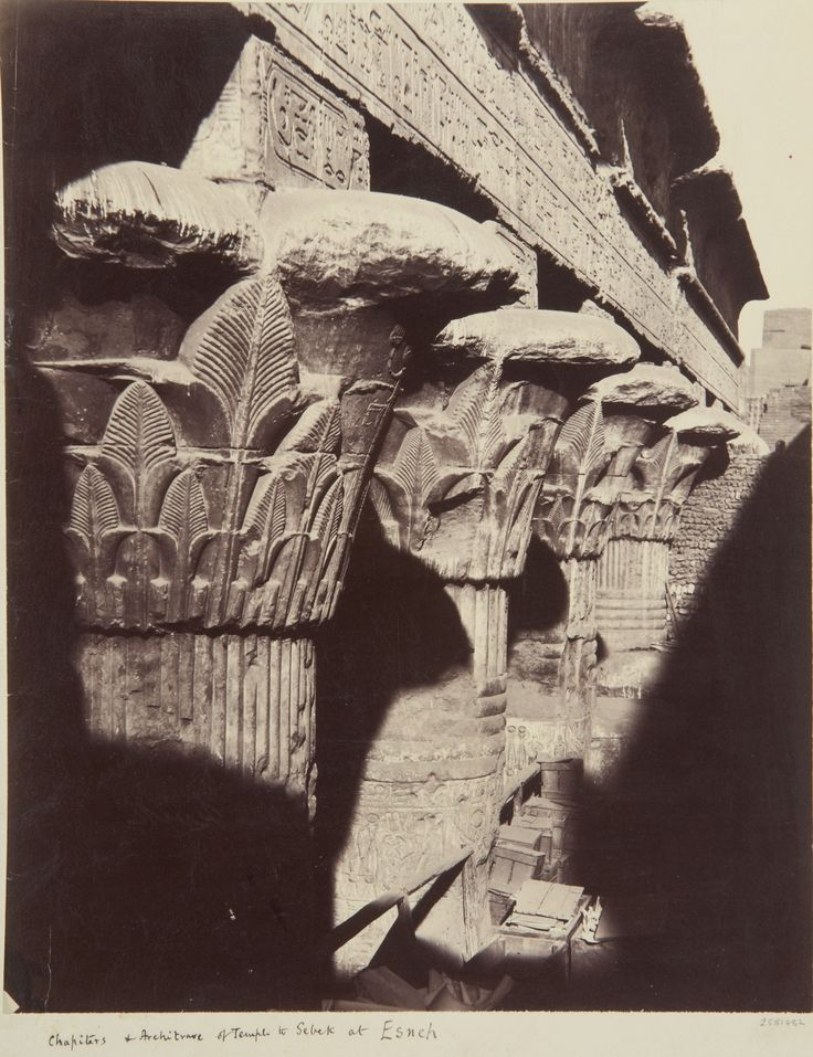 Photograph of row columns study capitals with