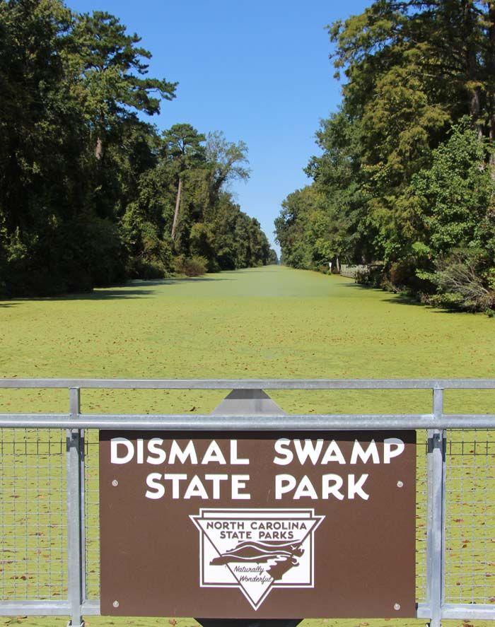 Great Dismal Swamp, North Carolina