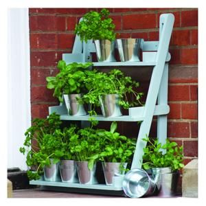 Herbs in stainless steel pots on plant stand balcony container gardens pinterest theatres - Steel pot plant stands ...