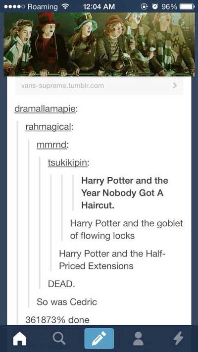 26 Funniest Things Tumblr Has Ever Said About Harry Potter   this is the best   Hermione in a Slytherin tie. Draco/Hermione