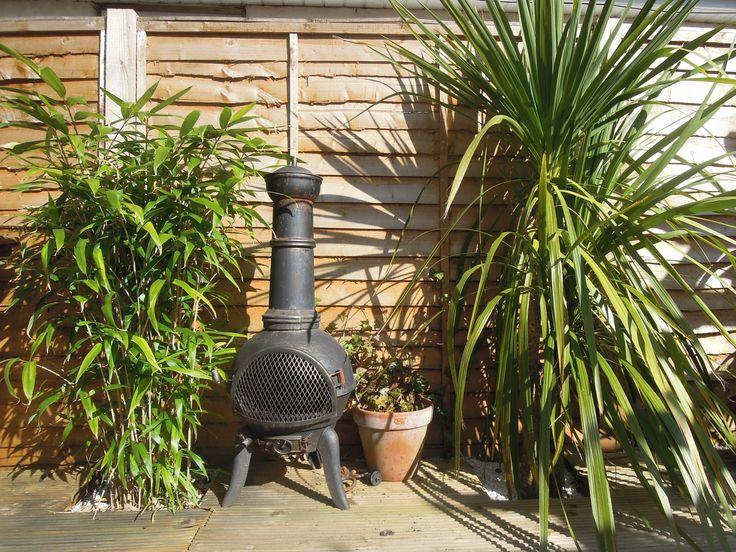 Tropical plants & cast iron chiminea #tropicalgardens #vintagechininea