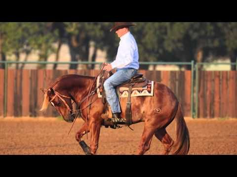 During the Ranch Rally, Clinton will hold three demonstrations geared toward training the performance horse:  #1: Reining Training With a 2-Year-Old  #2: Reining Training With a 3-Year-Old  #3: Working Cow Horse  Here's an idea of the type of advanced training you will see.