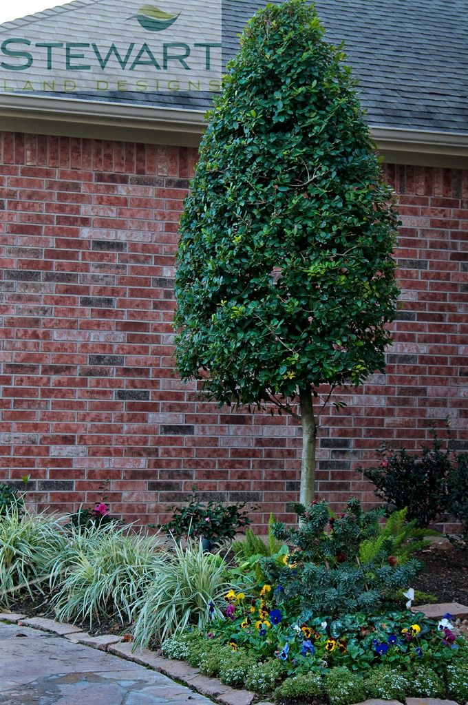 Don't be afraid to place small, well groomed trees in your flowers beds and right up along the home- they look great and add height to your yard! #StewartLandDesigns