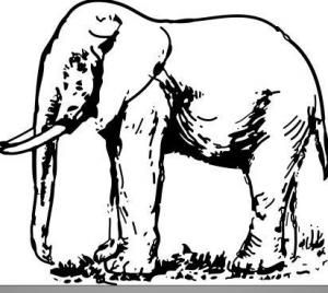 Cómo dibujar un elefante #manualidades #faciles #dibujar #animales