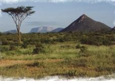 Kenya safari tour to the Samburu game reserve in the arid north frontier district of Kenya.  http://www.naturaltoursandsafaris.com/3_days_samburu_arts.php