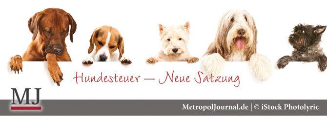 (NBG) Geänderte Fälligkeit der Hundesteuer – Steuersatz aber bleibt unverändert - http://metropoljournal.de/?p=8276