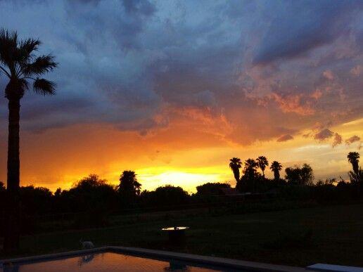 Cool backyard sunset