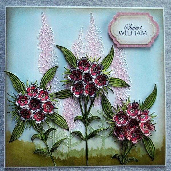 Sheena Victorian Floral Sweet William Stamp Set. Sheena Victorian Floral Sweet William Die Set. @CraftersCompUS