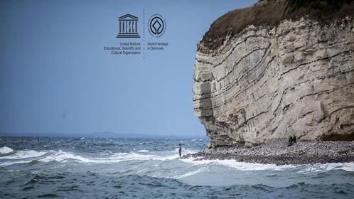 Stevns Klint part of UNESCO World heritage | VisitDenmark
