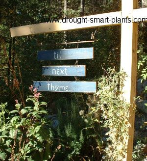 Signs Of The Thymes   Funny Garden Sign Sayings All About Thyme