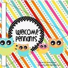 These cute owls and cheerful colors will help to welcome students, parents and visitors to your classroom!  This banner can also be used for a part...