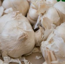 Garlic to Treat coughs