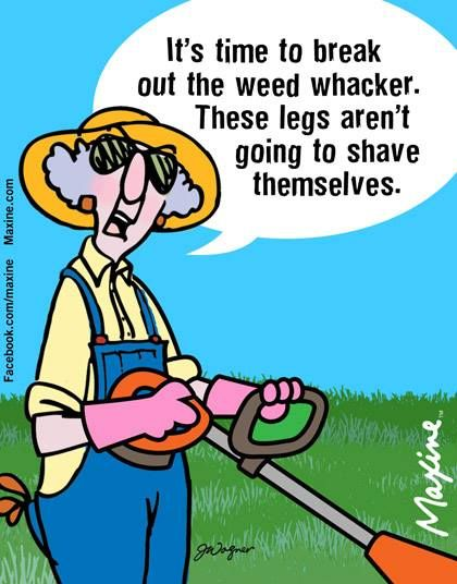 It's time to break out the weed whacker. These legs aren't going to shave themselves.