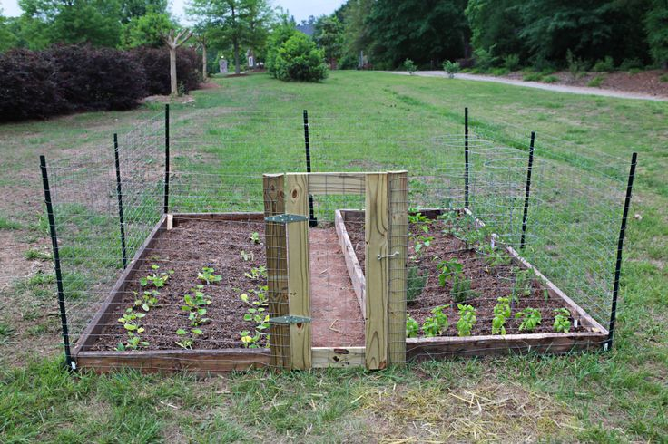 Easy DIY raised garden w/fence...  from Katie Bower at #bowerpowerblog.com