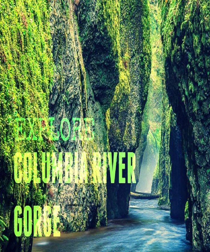 A Complete Guide to Visiting the Columbia River Gorge in Oregon. Includes the best hike, amazing waterfalls you need to see and how to get to them, nearby fun attractions and local campground information. Check it out! Great summer time trip :)