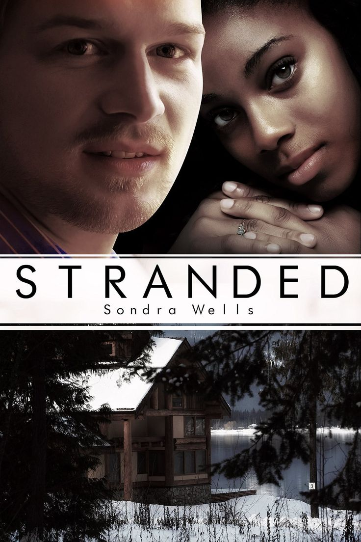 Stranded (bwwm Interracial Christmas Romance) Ebook: Sondra Wells:  Amazon