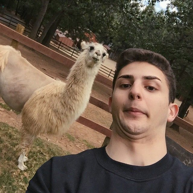 Issa @twaimz i'm cryingInstagram photo | Websta (Webstagram)