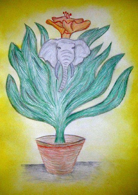 Foto - Popletená rostlina