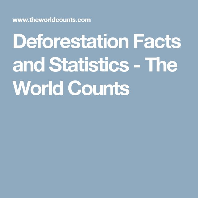 Deforestation Facts and Statistics - The World Counts