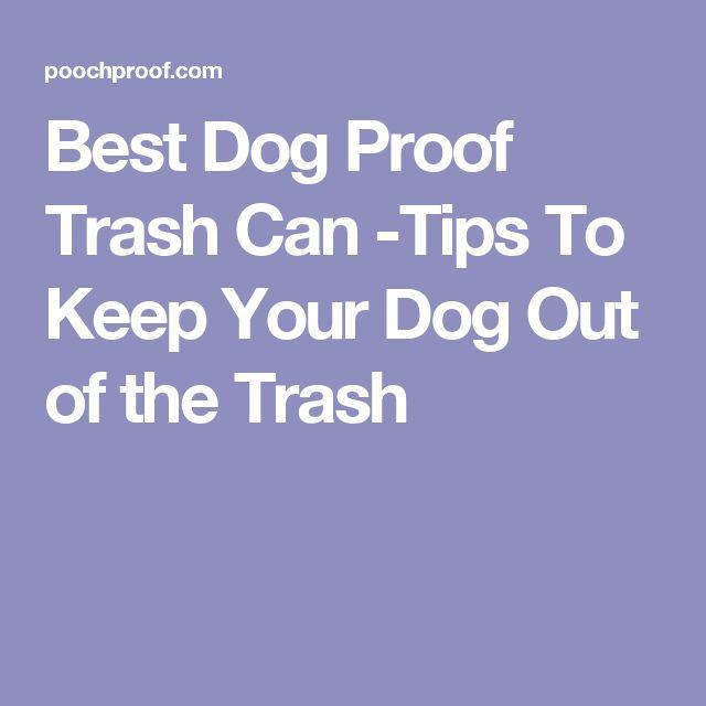 Best 25 Dog Proof Trash Can Ideas On Pinterest Dog Food