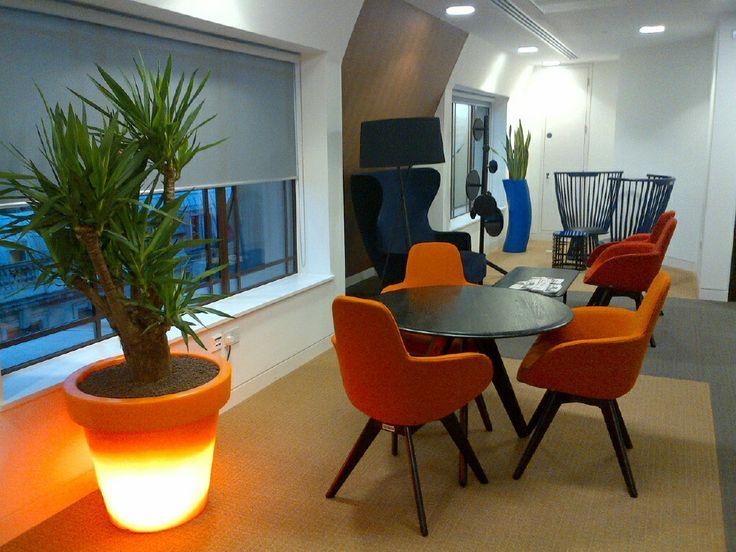 34 best Indoor Garden Design Office planting schemes images on