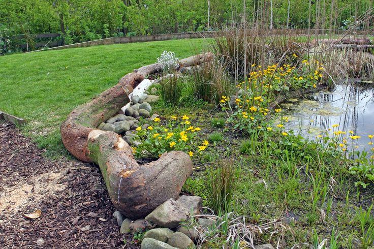 16 best edging images on pinterest landscaping for Pond edging ideas