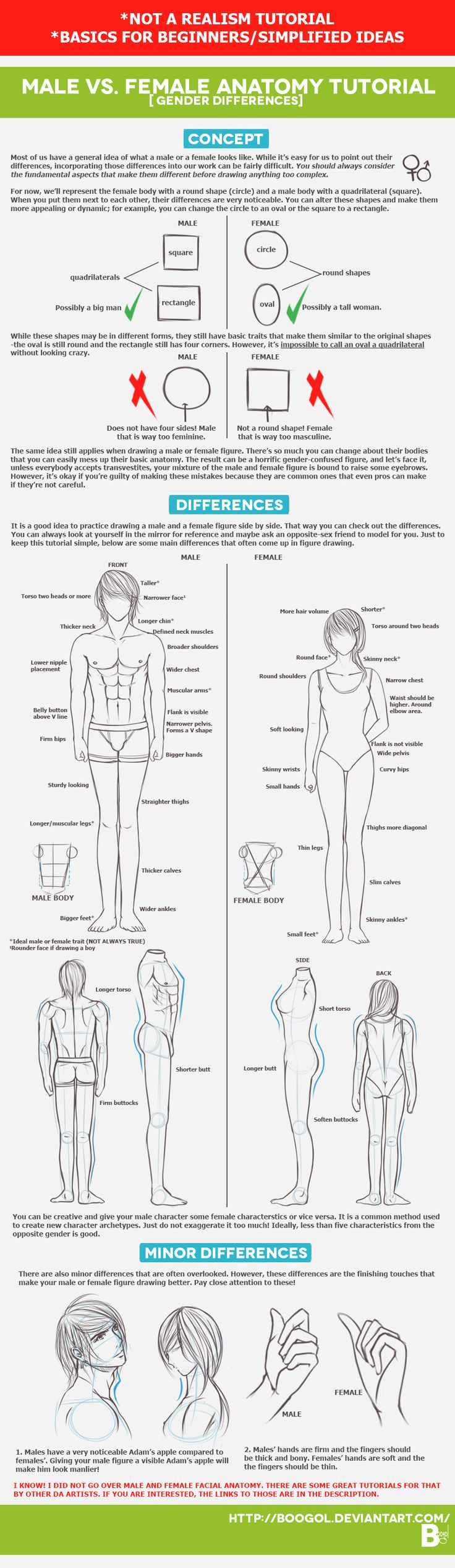 a comparison of male and female body Body image perceptions: do gender differences exist through the use of social comparison for typical men to attain as the ideal female body is.