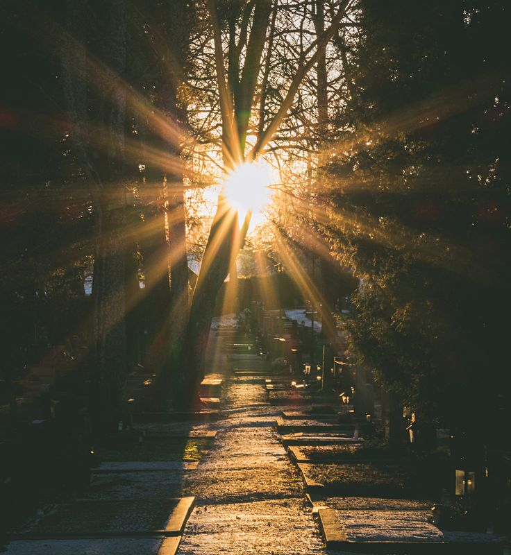 TowardsTheLight - Great afternoon light