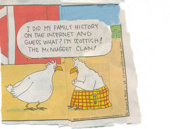 Best Chicken Jokes: 17 Best Images About Jokes On Pinterest