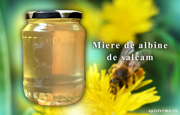 Mierea de salcam contine vitaminele B1, B2, B6, B12, enzime, compusi aromatici, fitohormoni, acizi organici (lactic, malic, oxalic, citric), flavoane, flavonoide, dextrina, compusi ai azotului.