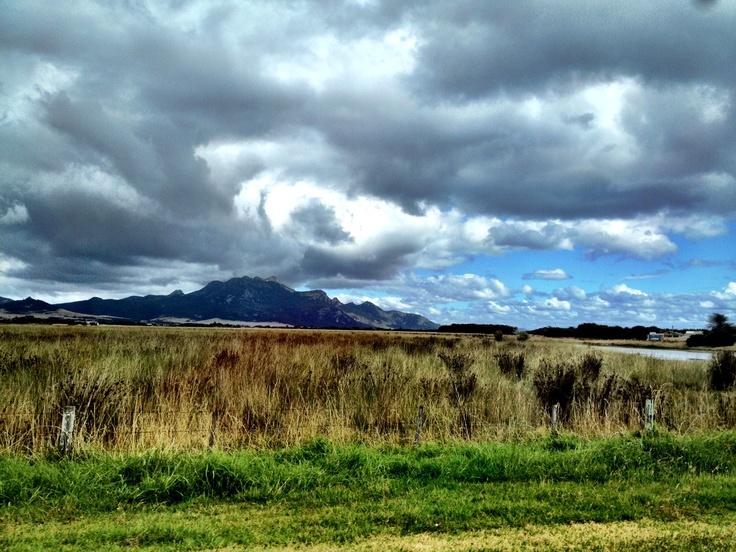 Mt Strezlecki - Flinders Island
