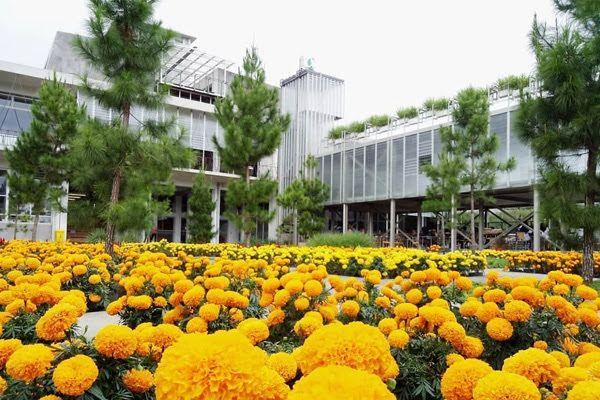 Taman Bunga Atsiri Karanganyar