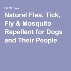 Natural Flea, Tick, Fly & Mosquito Repellent for Dogs and Their People