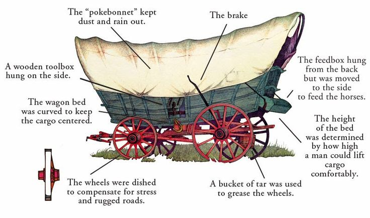 parts of a covered wagon diagram - Google Search | outside ...