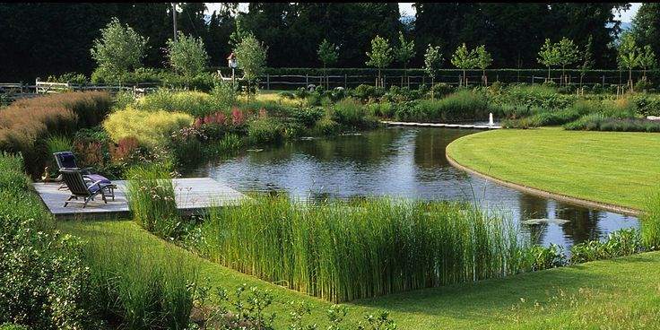 A garden in rural hampshire uk designed by english firm for Large pond design ideas
