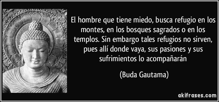 El hombre que tiene miedo, busca refugio en los montes, en los bosques sagrados o en los templos. Sin embargo tales refugios no sirven, pues allí donde vaya, sus pasiones y sus sufrimientos lo acompañarán (Buda Gautama)