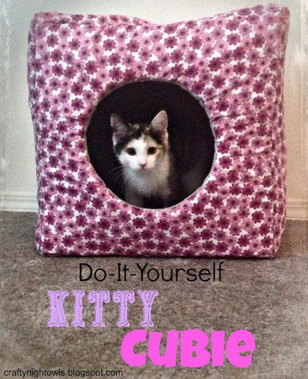 How To Make A Kitty Cubie   If you have kittens, then you know they are inquisitive and playful and will thrive in a fun environment like a kitty cubie.