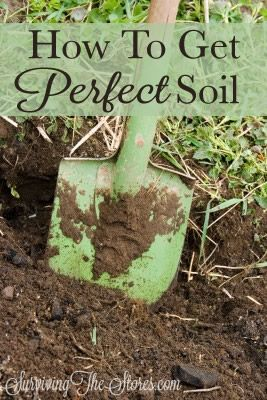 How to make sure that your garden has the perfect soil!